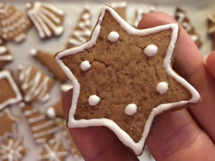 biscotti natale fai da te regalo